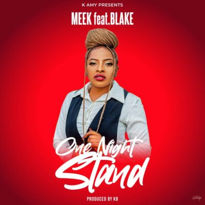 Meek ft Blake - One Night Stand (Prod. by KB)